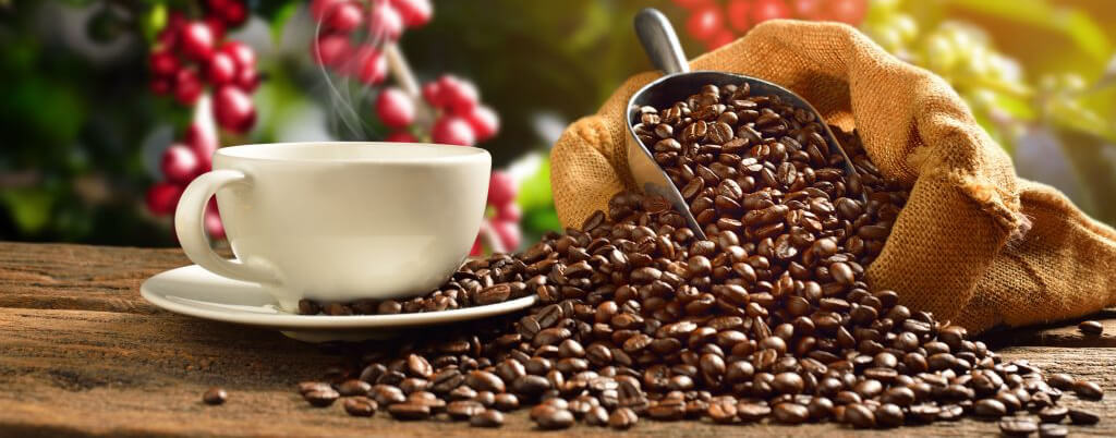 Fall For Coffee Beans